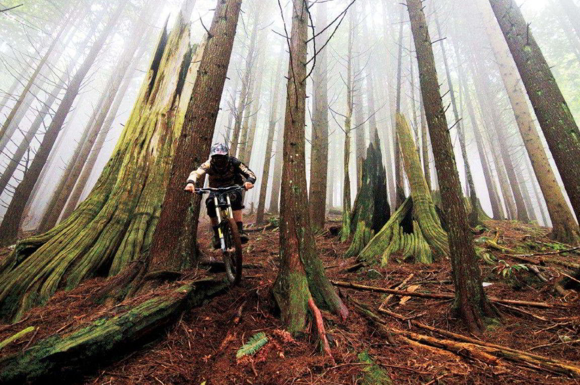Galateo in mountain bike